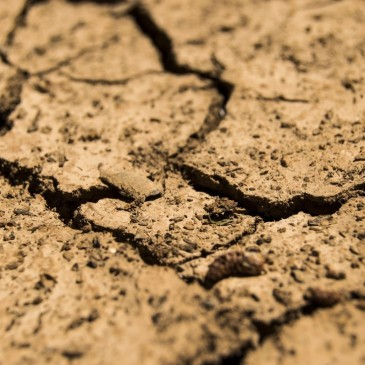 Malawi under serious drought conditions